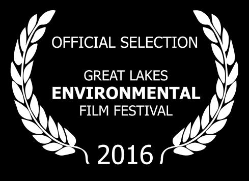 Great Lakes Laurel-White-Black